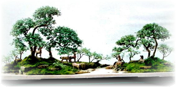 认为在徽州境内以下植物种类都是制作树桩盆景或点缀山石盆景的上好