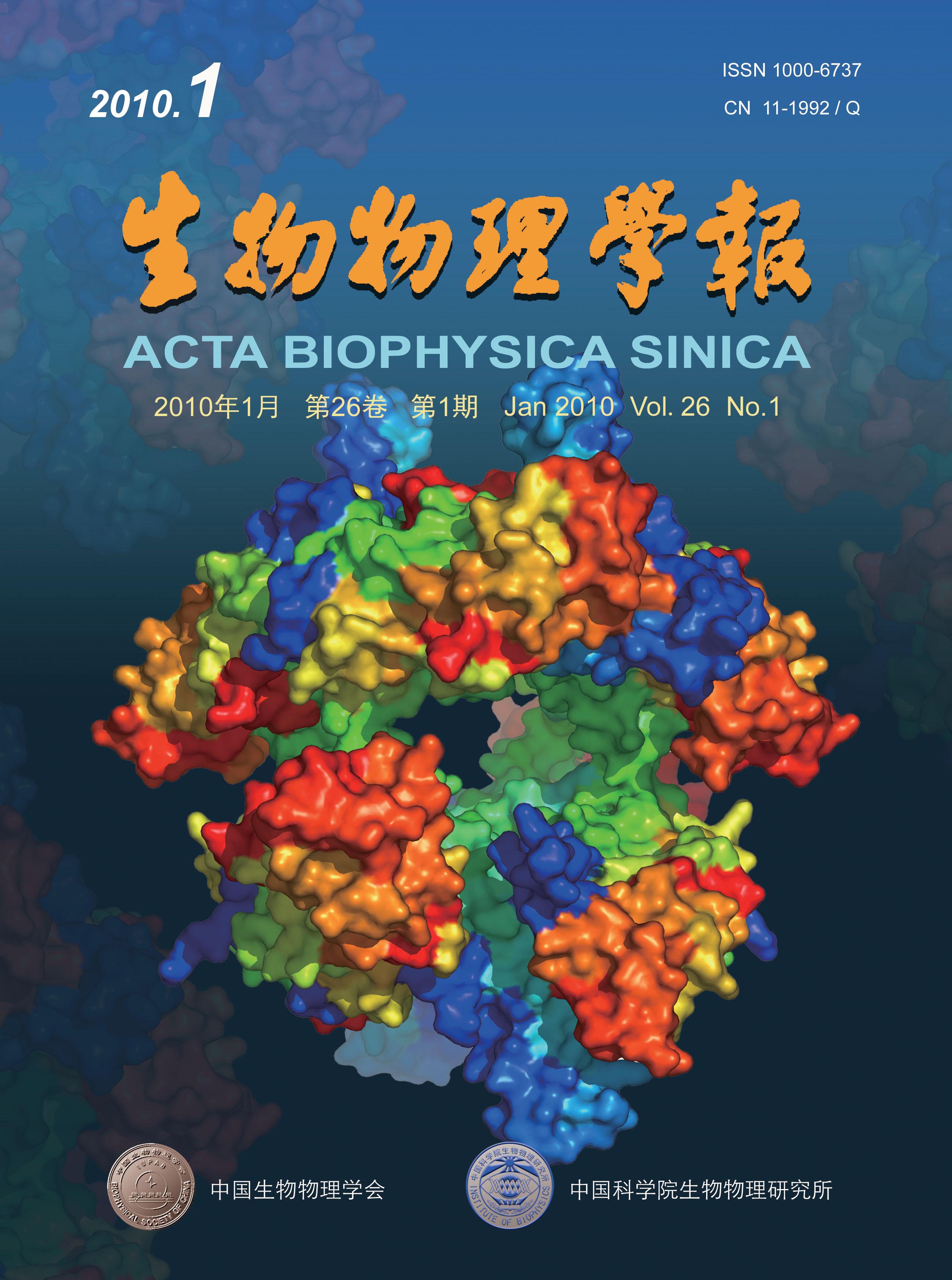 生物大分子的结构与功能