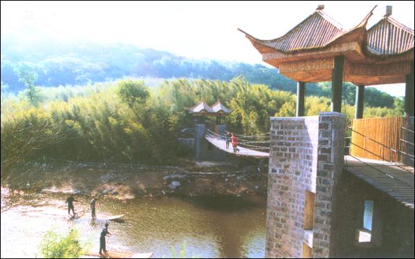 青岛旅游集团王红图片